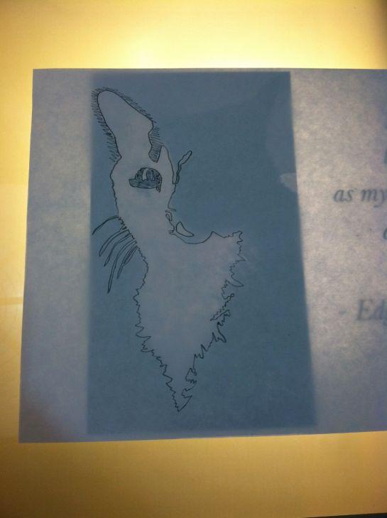 Cat Illustration for Edgar Allen Poe quote8